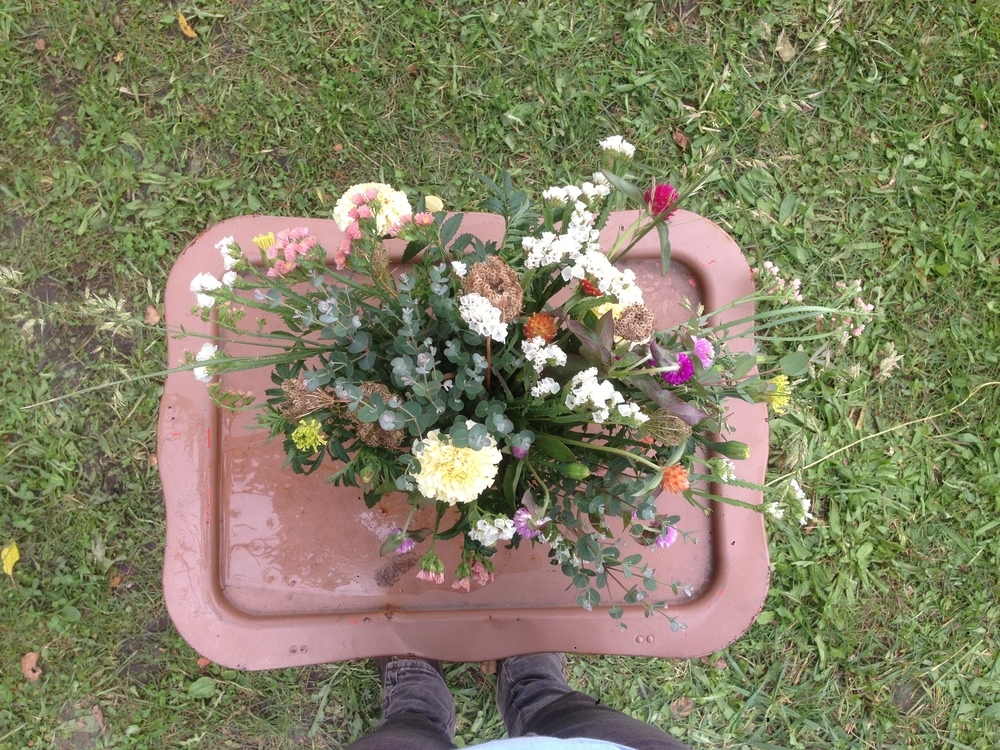 eucalyptus, gomphrena, marigold, and statice in pale blue vintage dish
