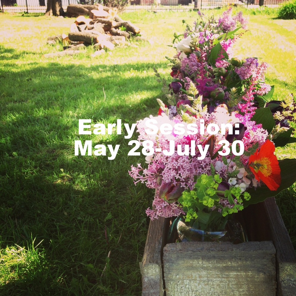 Poppies, tulips, lilacs, lady's mantle, astilbe, and more from the Early Weekly Bouquet Service in 2014