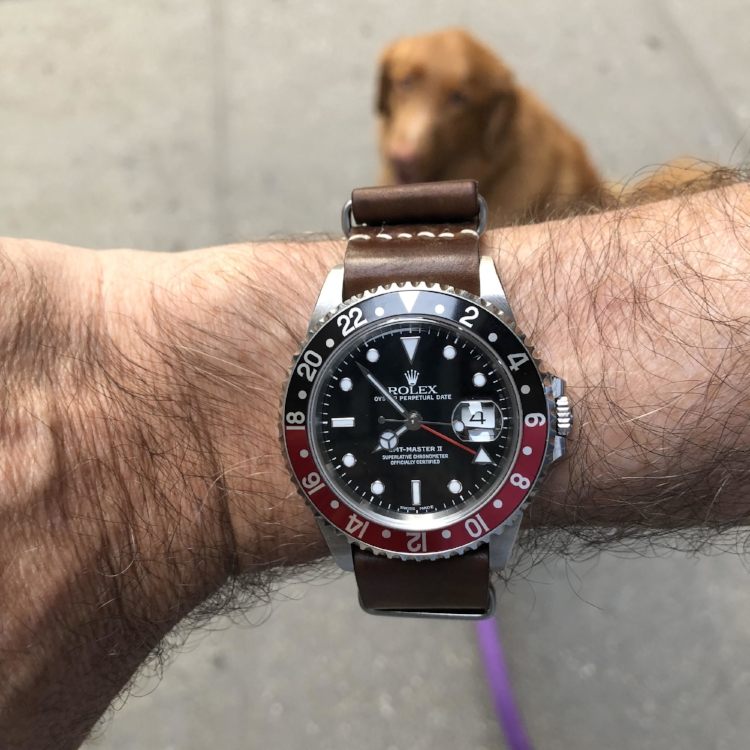 GMT II on a MIL strap in Cognac. Rusty seems to approve!