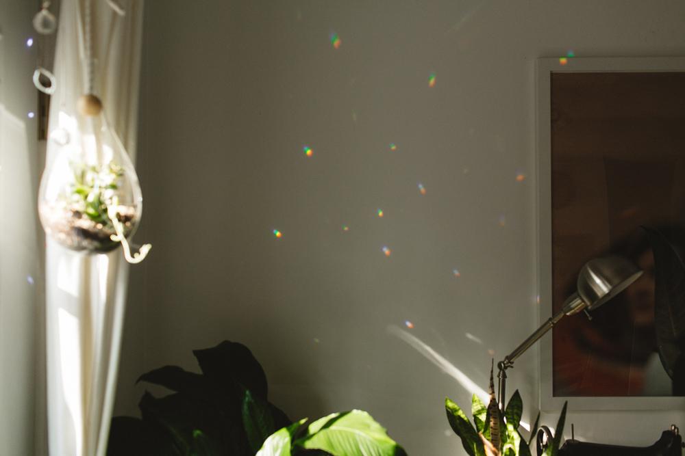 SadieCulberson-Home-63.jpg