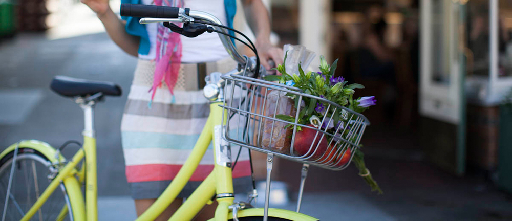 city bike flowers basket dress.jpg