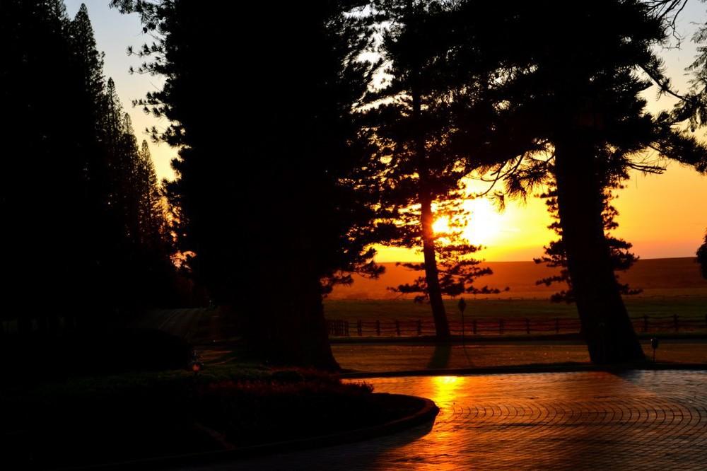 Four Seasons Lanai Koele – Sunset