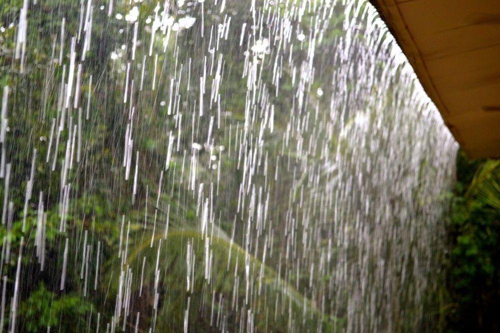 Costa Rica Osa Peninsula – rain in the jungle