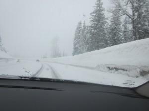 Steven's Pass - the drive