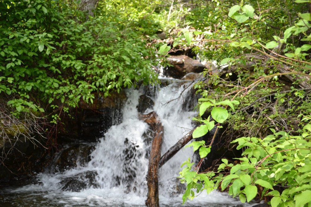 Peace Park Hike - waterfall