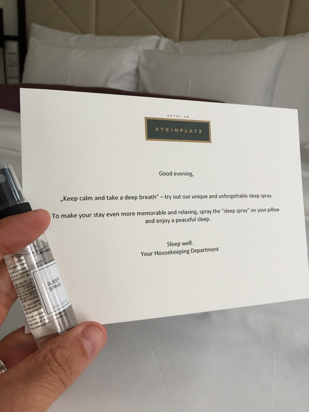 Check out this cool surprise we got one evening. We got a similar surprise each evening (as do all guests).