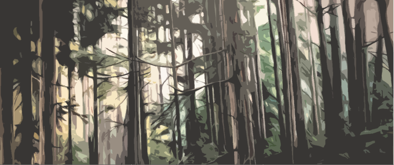Trees Distorted.png