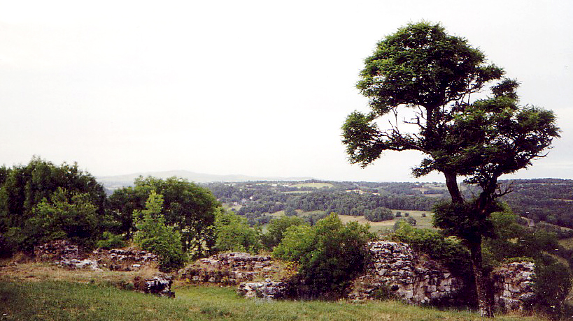 Ruins of the dismantled château