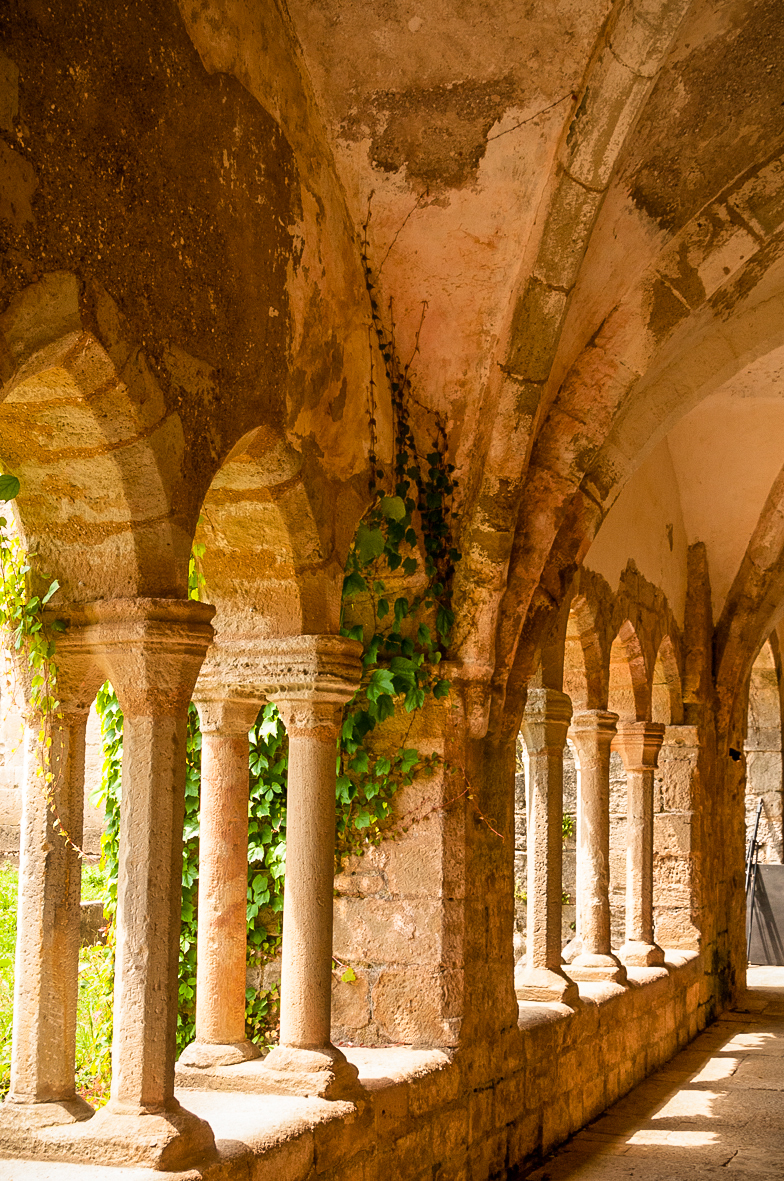 L'Abbaye de Sylvanès-3.jpg