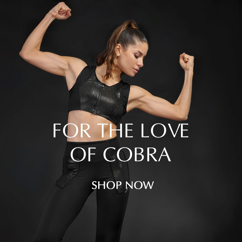 cobra love square revised 3 6 18.jpg