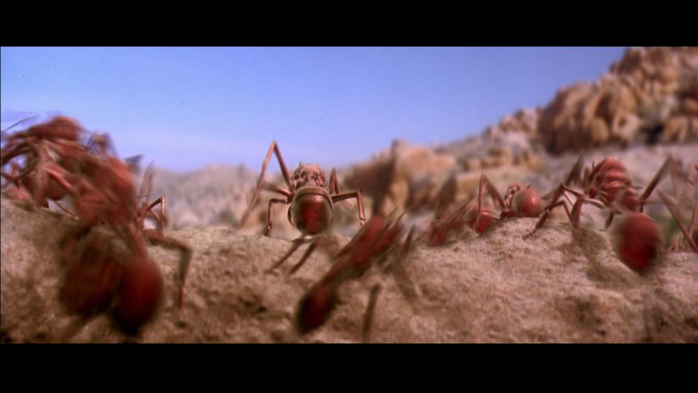 ScorpionKing_02.jpg