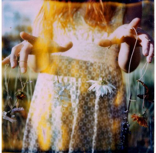 -polaroid :     (by  moonquartz )