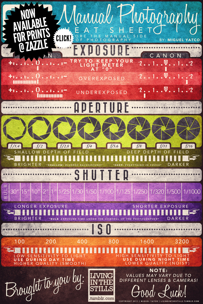 just what i needed -    curiositycounts :     Gorgeous vintage-inspired  infographic guide  to manual photography   ( via )