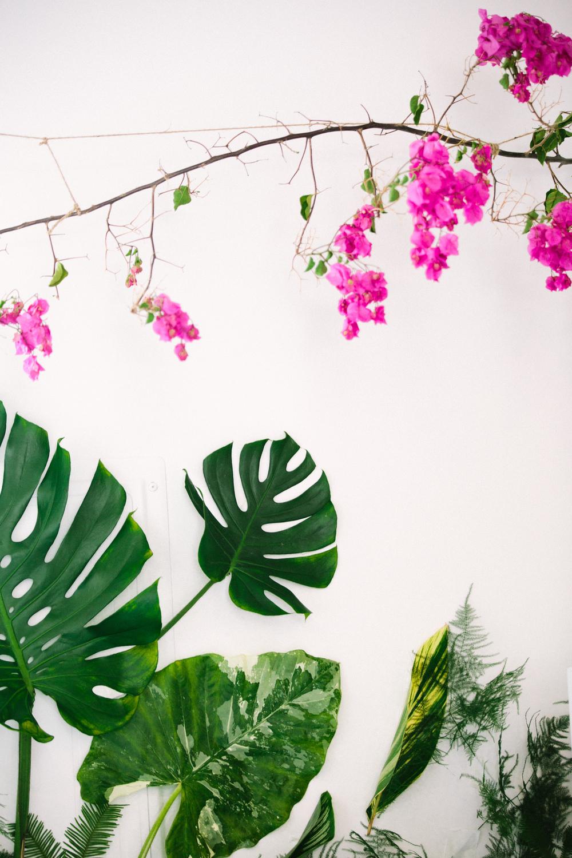 www.mishinaphoto.com    www.theassemblycafe.com    www.mybabyolivejuice.com
