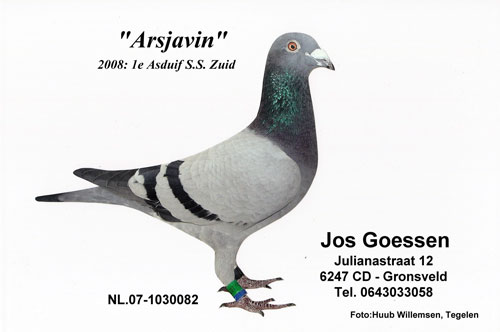 arsjavin082 (1).jpg