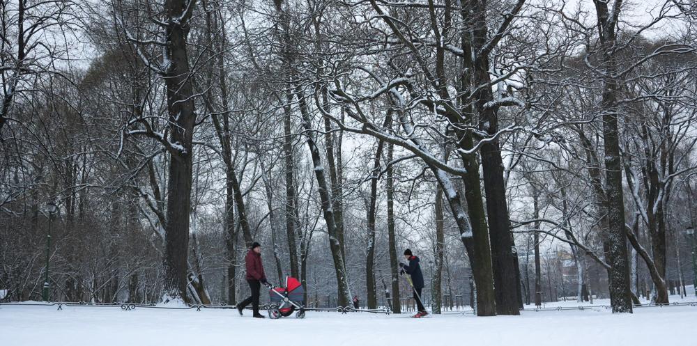Taurispark, Sint-Petersburg, winter, langlaufen, kinderwagen