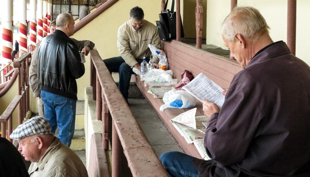 renbaan paarden dravers publiek toeschouwers