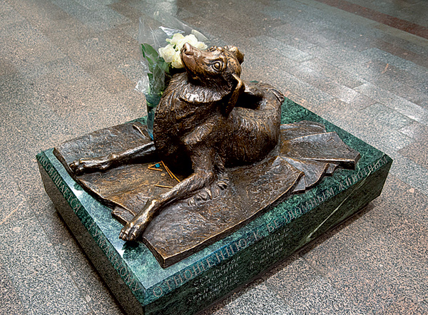 beeld hond zwerfhond metro Moskou Mendelejevskaja