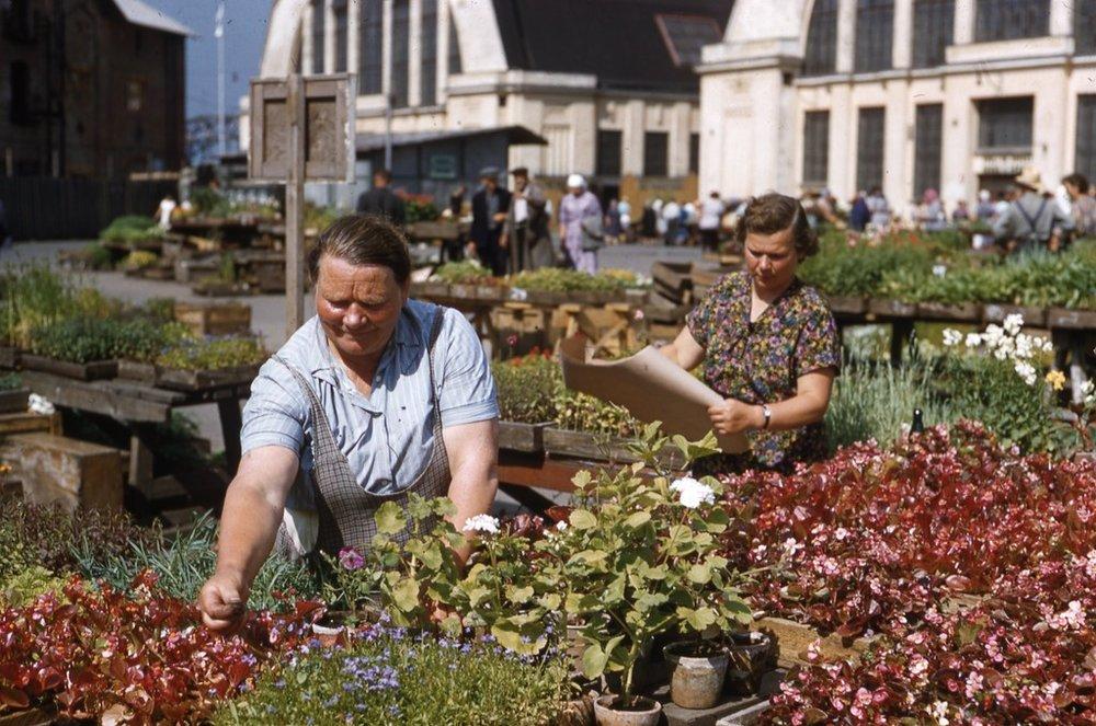 De markt van Riga, 1958.