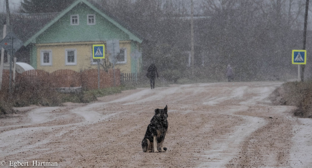 Osjevensk