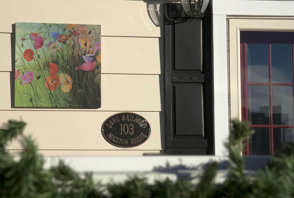 Outside poppies (2).jpg