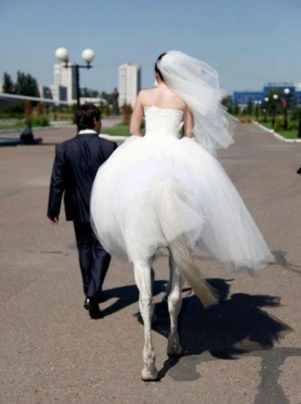 bridehorse.jpg
