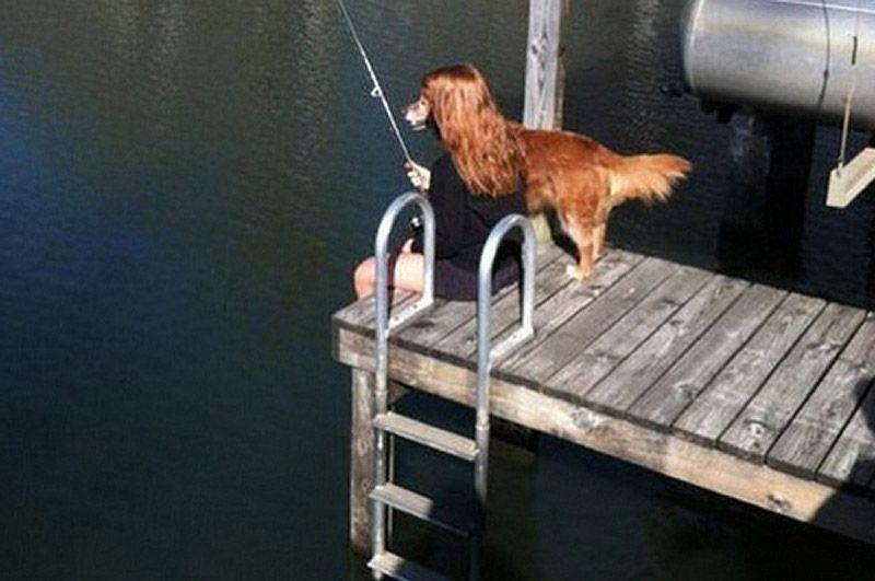 dogfishing.jpg