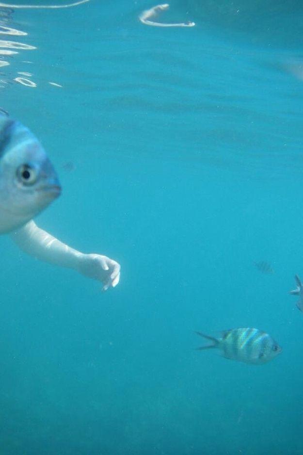 fish arm.jpg