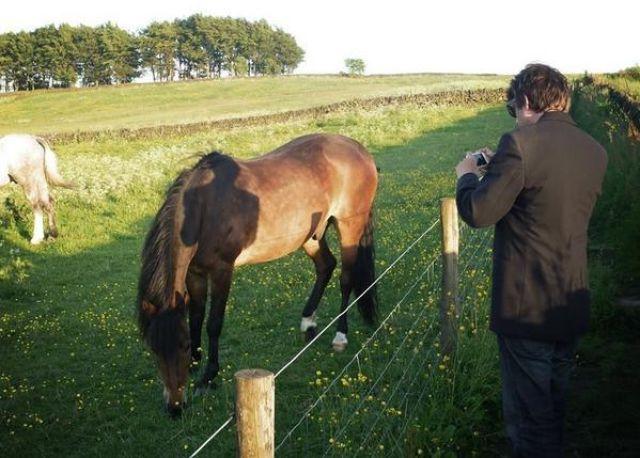 horsehadow.jpg