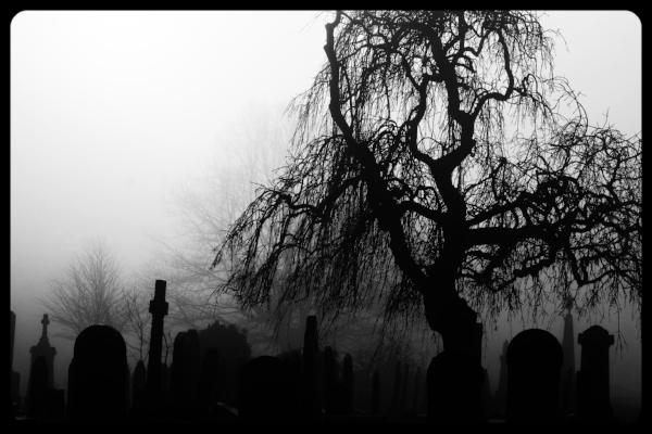 Cemetary Fog.jpeg