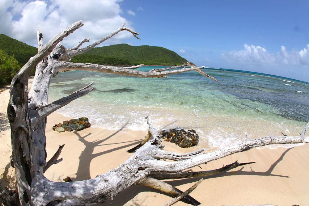 St John Homes And Villas About St John Us Virgin Islands