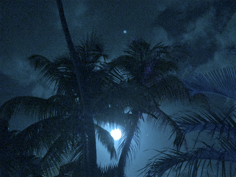 Caribbean Night Sky