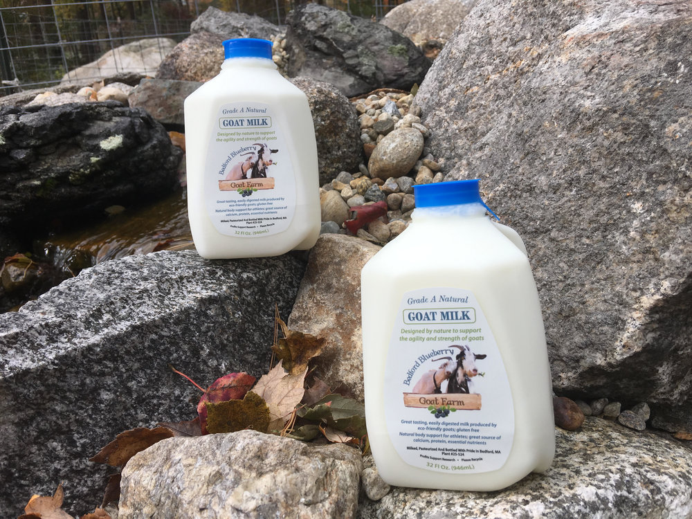 Bottling goat milk