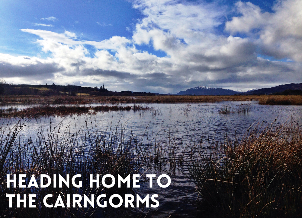 CAIRNGORMS INSH MARSHES