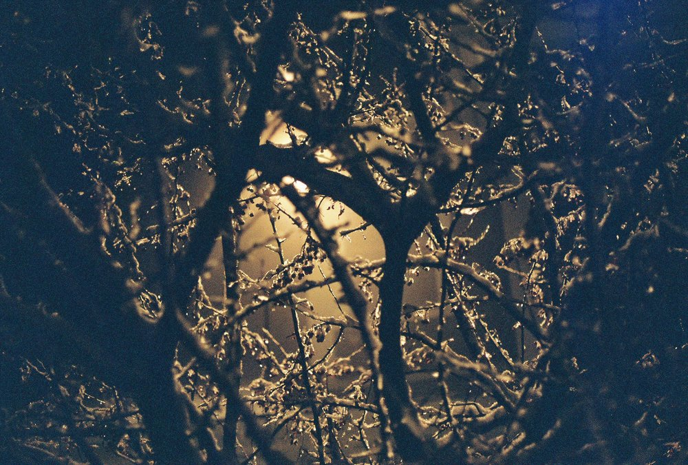 Photo Dec 09, 10 39 06 AM.jpg