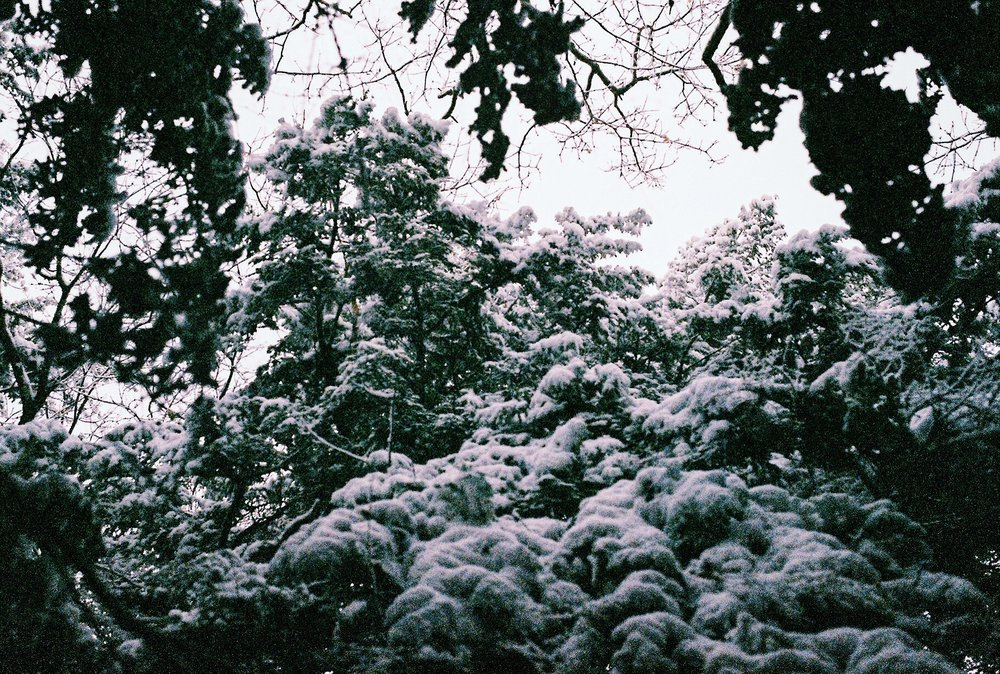 Photo Dec 11, 5 53 42 PM.jpg