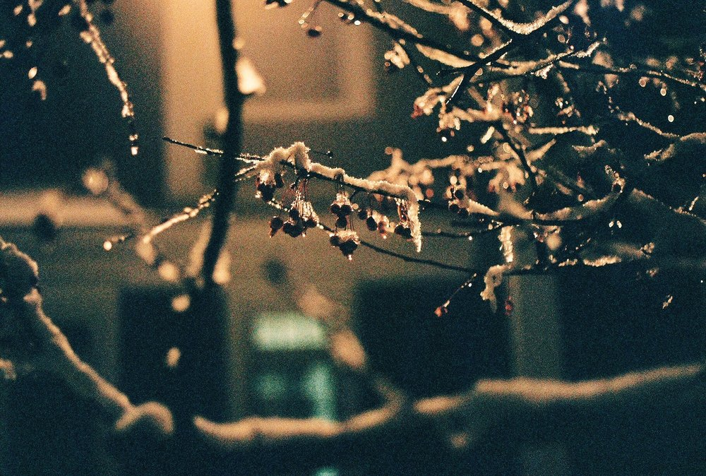 Photo Dec 12, 5 30 28 PM.jpg