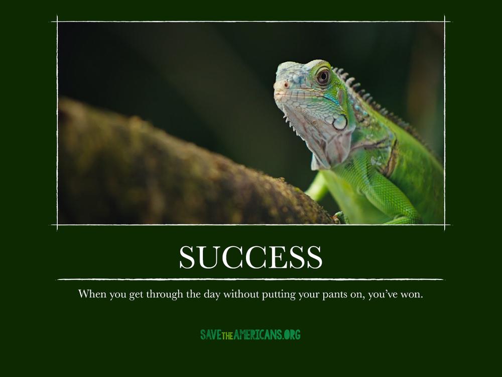 CR_STA_DemotivationalPosters_success.jpg