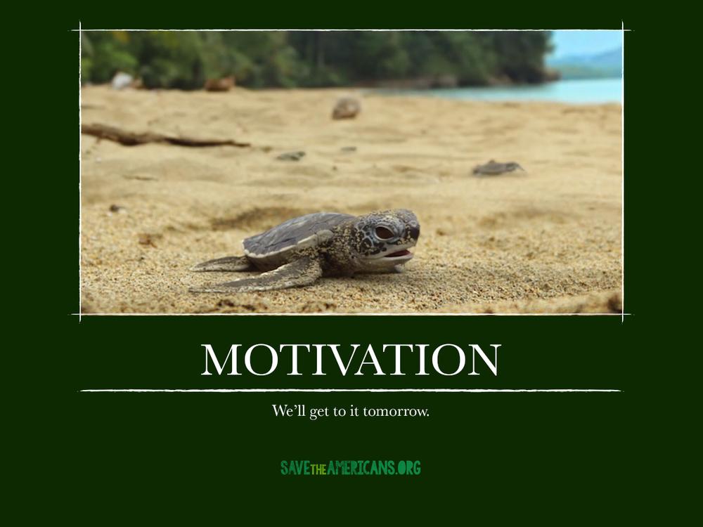 CR_STA_DemotivationalPosters_motivation.jpg