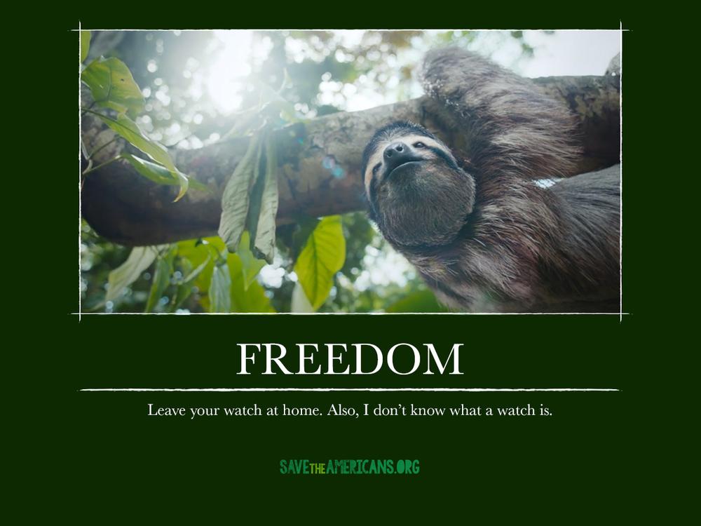 CR_STA_DemotivationalPosters_freedom.jpg