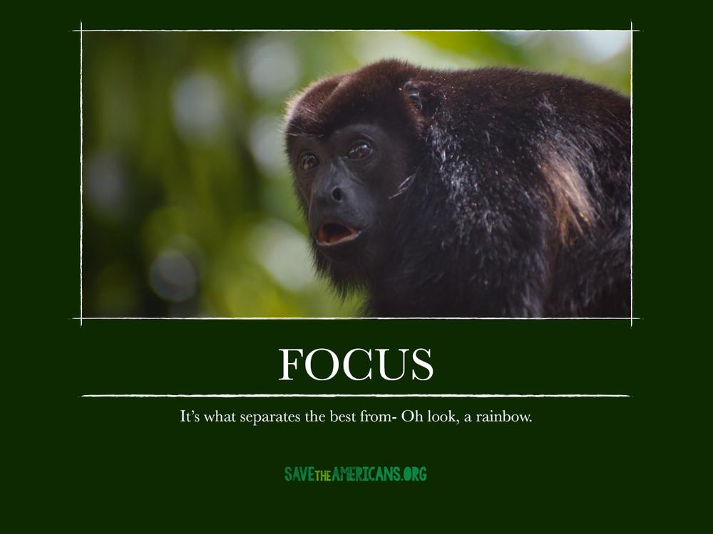 CR_STA_DemotivationalPosters_focus.jpg