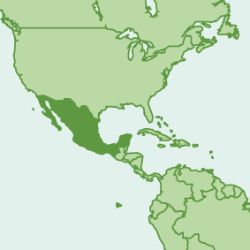 mexico_map.png