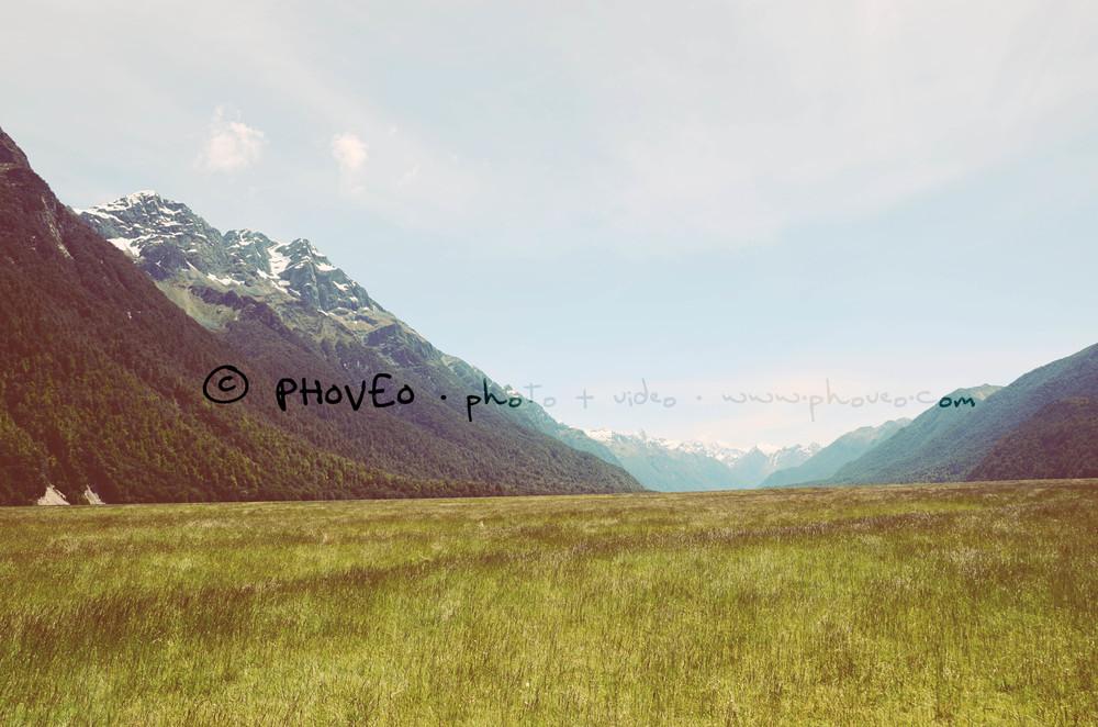 WM_NZ28.jpg