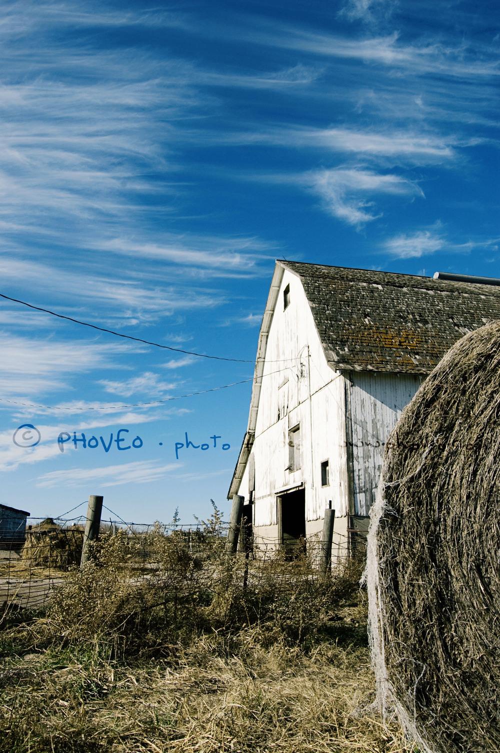 WM_barn3.jpg