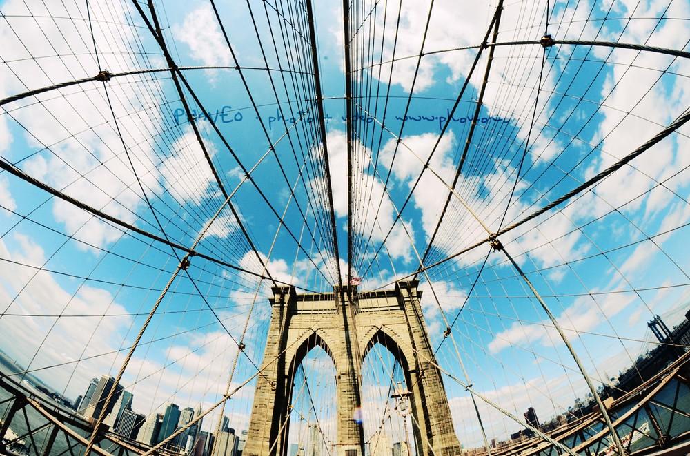 WM_NY10.jpg