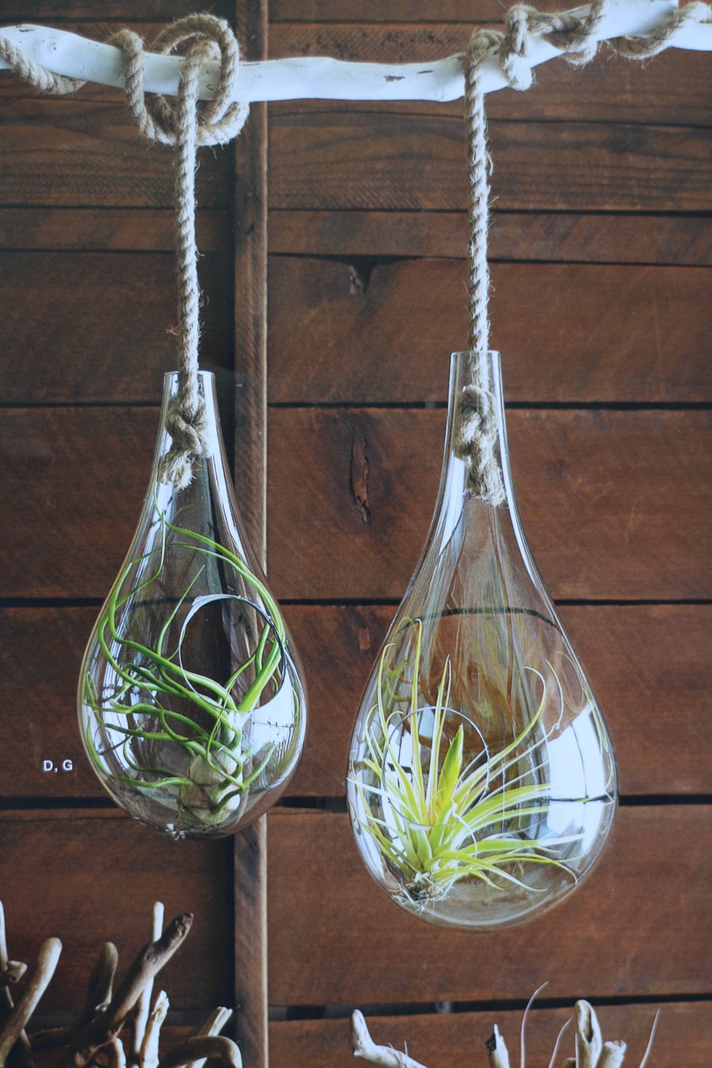 I would like to make these macrame type plant hangers (although I'm having the toughest time finding macrame cord!?!) And also, hanging terrariums to hang from my new hanging branch with hooks; which by the way  a tutorial will be up for that hopefully this weekend!