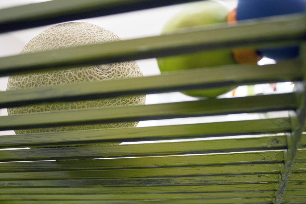 melon from below.jpg