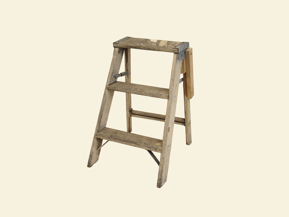 ffixed stepladder.jpg