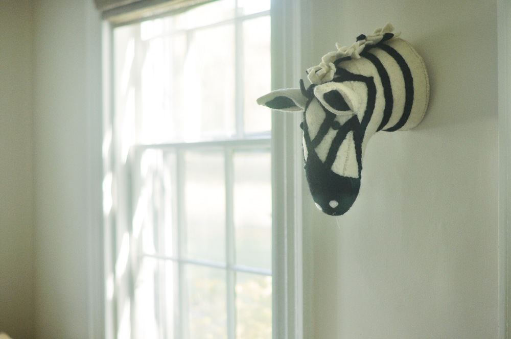 zebra safari animal wall head