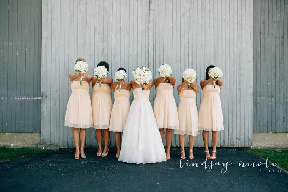 Tiffin_Ohio_Wedding_Borer-26.jpg